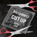BigSammyZ - Cut Up (Original Mix)
