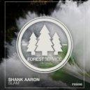 Shank Aaron - Slam (Original Mix)