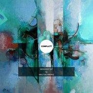 Weltschmerz - Focusing On Things (Original Mix)