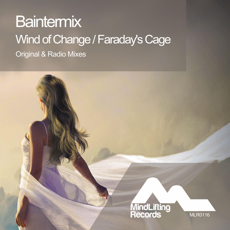 Baintermix - Faraday\'s Cage (Original Mix)