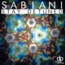 Sabiani - Ride The Kite (Original mix)