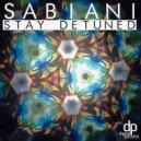Sabiani - Stay Detuned (Original mix)