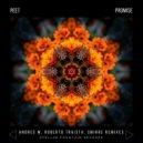 Peet - Promise (Roberto Traista Remix)