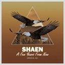 Shaen - A Few Years From Now  (Original Mix)