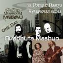 Потап и Настя vs. Infected Mushroom - Чумачечая весна vs. One Day (Avadhuta MashUp)
