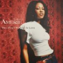 Amerie - Why Don\'t We Fall In Love (Casual Connection Rework)