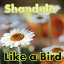 Shandula  -  Like A Bird  (Original Mix)