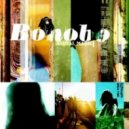 Bonobo - Silver (Original Mix)