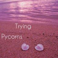 pycorns - Trying (We Work)