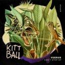 Veerus - Can\'t Stop, Won\'t Stop (Original Mix) ()