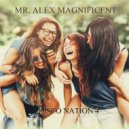Mr. Alex Magnificent - Disco Nation 4 ()