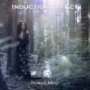 Induction Effect - Новый Мир (Акустическая версия)