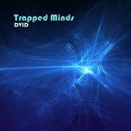 DVID - Silicate Rain (Original Mix)
