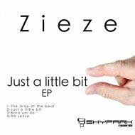 Zieze - No sense (Original Mix)
