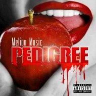 Melion Music - Pedigree (Original Mix)