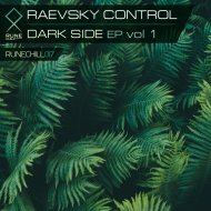 Raevsky Control - LWAW (Love Will Always Win) (Original Mix)