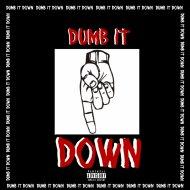 Slick James - DUMB IT DOWN (Original Mix)