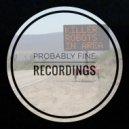 Rain City Riot  - Balancing Cats (Tracy Rhodes Remix)