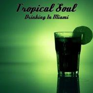 Tropical Soul - Freedom Cake (Original Mix)