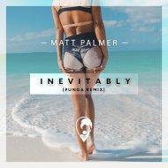 Matt Palmer  - Inevitably (Punga Remix)