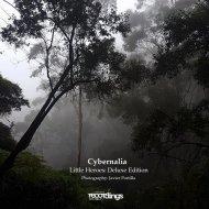 Cybernalia  -  Clockwork Butterfly  (Original Mix)
