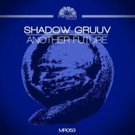 Shadow Gruuv  -  Another Future (Original Mix)