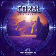 Coral - Network Algorithm (Original Mix)