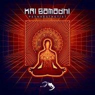 Kri Samadhi - Mercury7 (Original Mix)