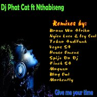 Dj Phat Cat & Nthabiseng & Finch Afro - Give me your time (feat. Nthabiseng) (Finch Funky Afro Remix)