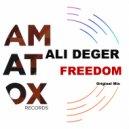 Ali Deger - Freedom (original Mix)