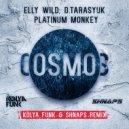 Elly Wild, D.Tarasyuk & Platinum Monkey - Cosmos  (Kolya Funk & Shnaps Remix)