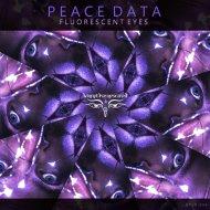Peace Data - Paper Happiness II (Original mix)