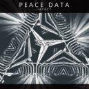 Peace Data - The Future (Original mix)