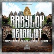 Bassface Sascha & Feindsoul feat MC Spyda - Imitation Soundbwoy  (Original Mix)