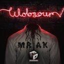 Wobsour - Mrak (Original Mix)