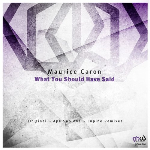 Maurice Caron - What You Should Have Said (Original Mix)