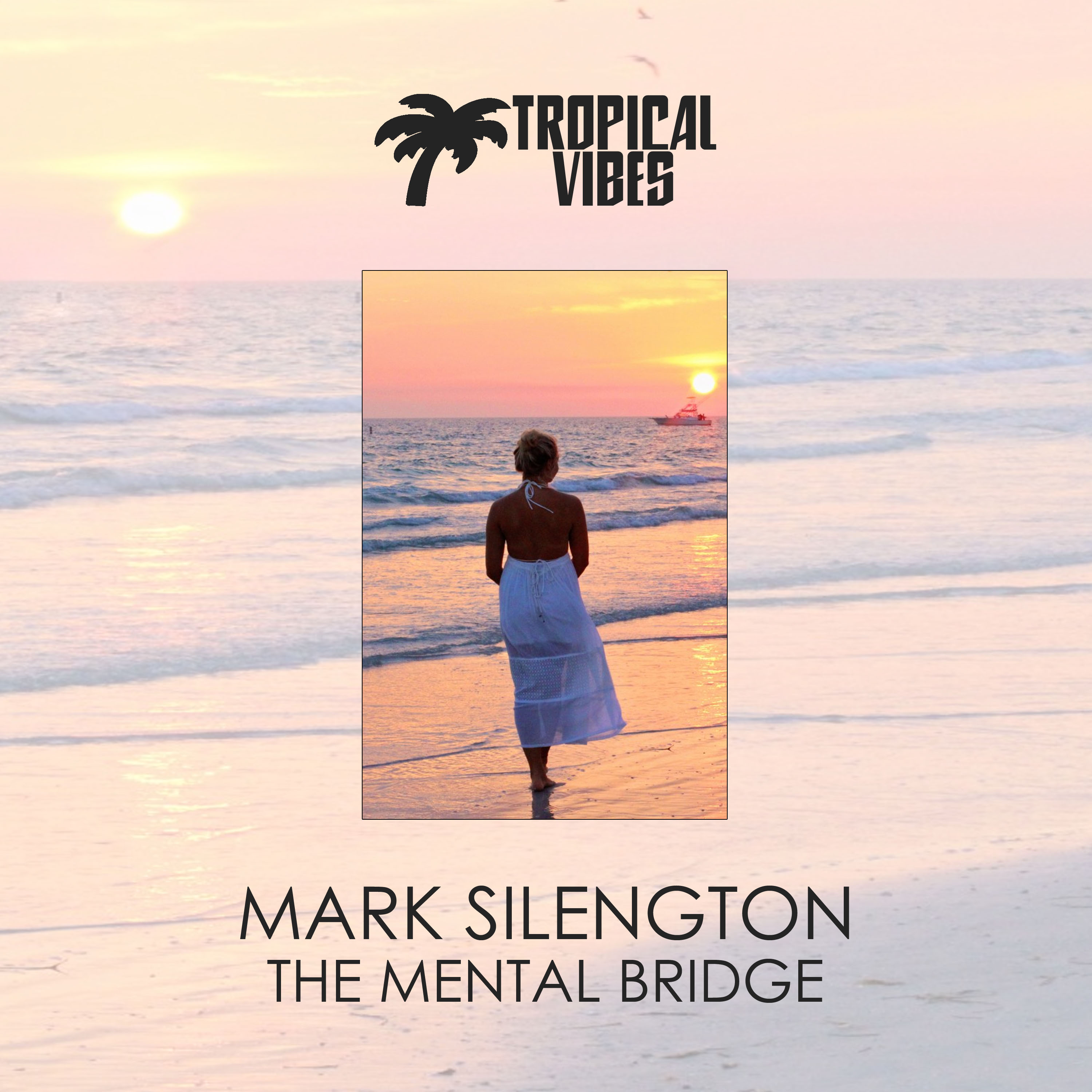 Mark Silengton - House In The Night (Original Mix)