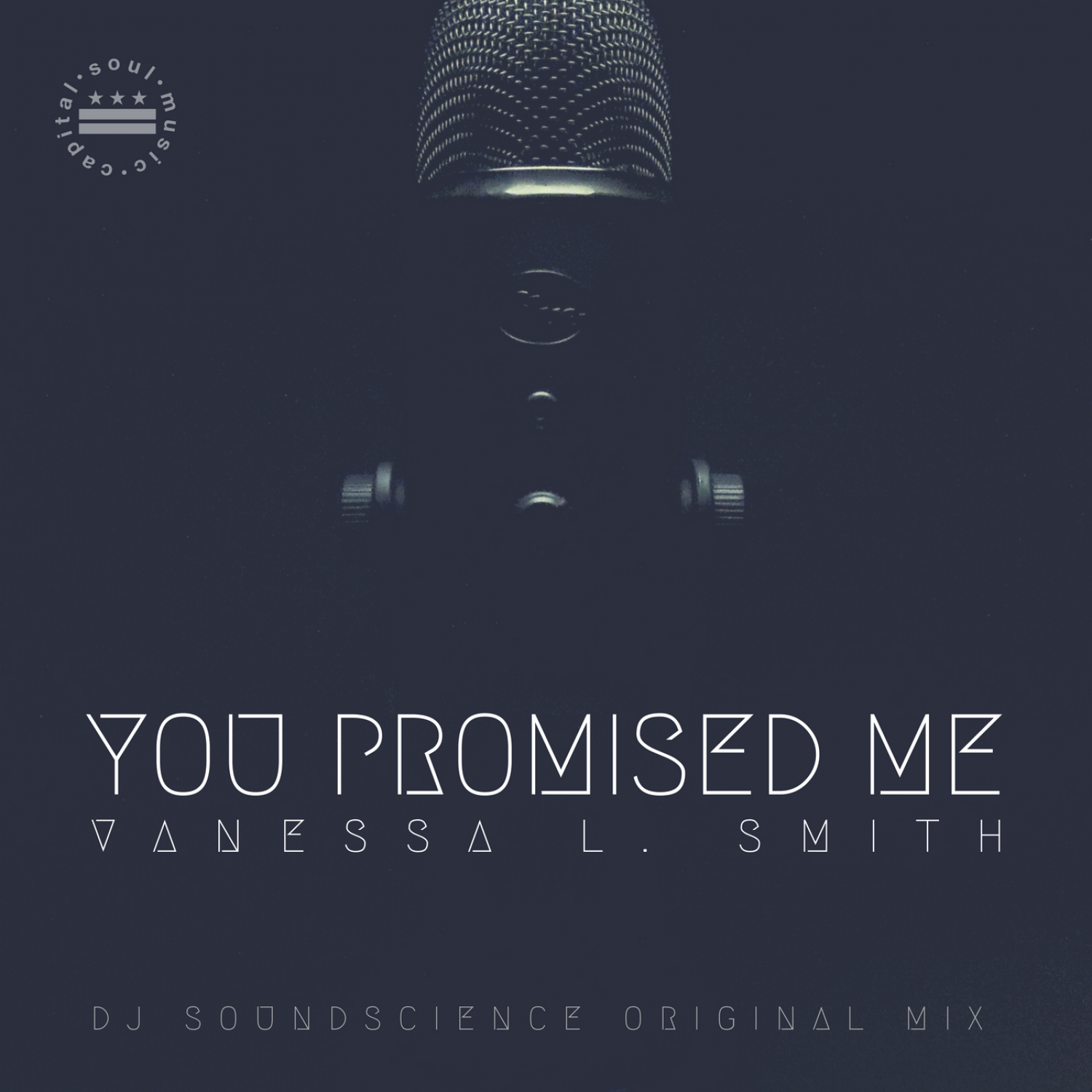 Vanessa L. Smith & Tim Wayne aka DJ SoundScience - You Promised Me (Instrumental)