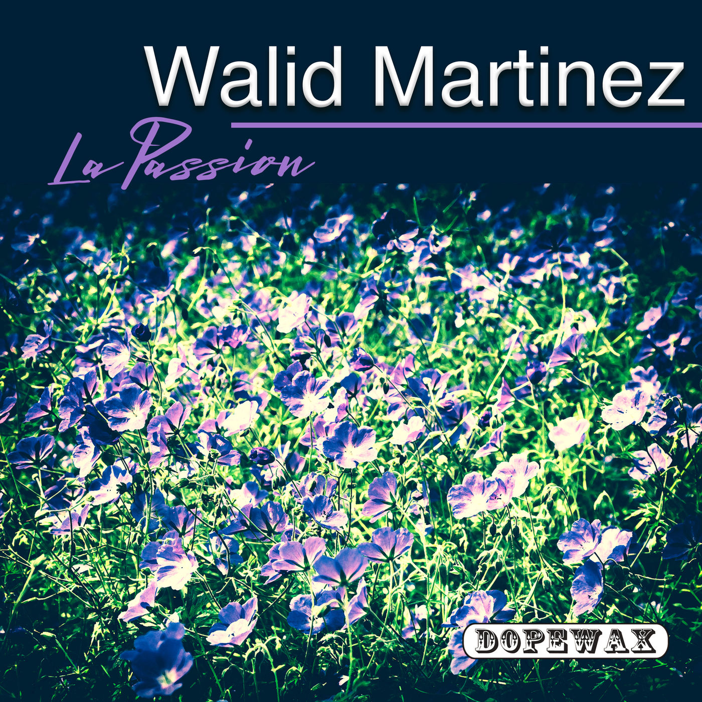 Walid Martinez - La Passion (Original Mix)