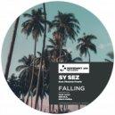 Sy Sez, Phoenix Pearle - Falling (Sebb Junior Remix)