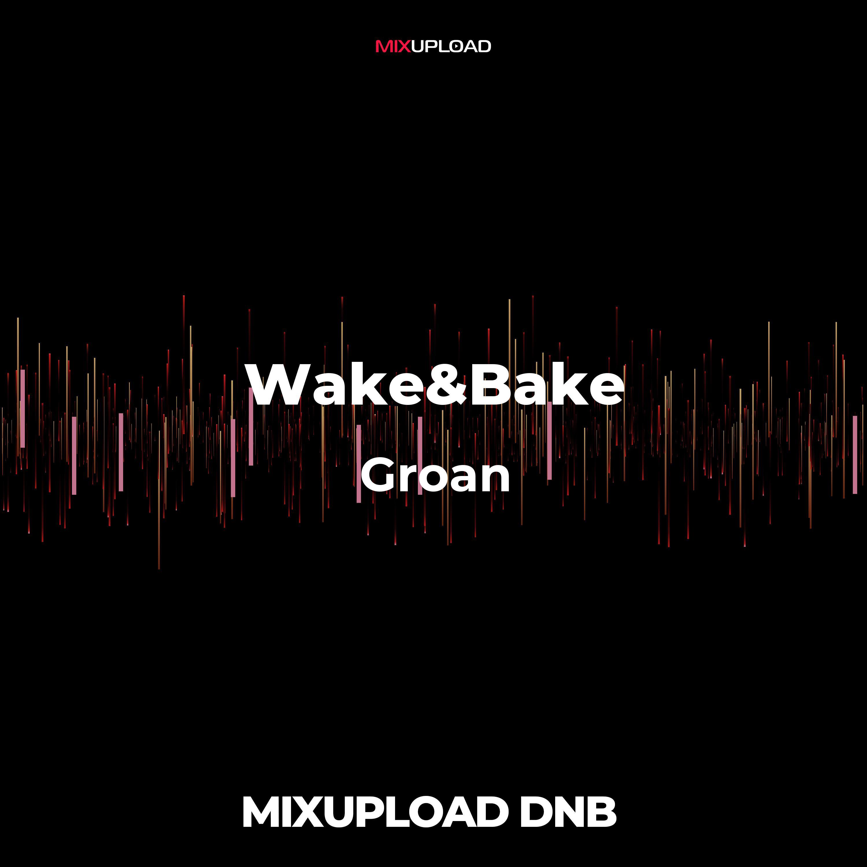 Wake&Bake + 1312 - Resilience (Original MIx)