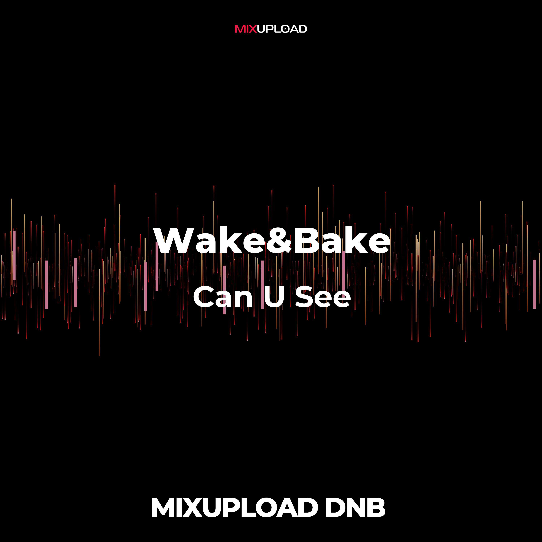Wake&Bake + Bitsune Ft. White Sugar  - Can U See (Original MIx)