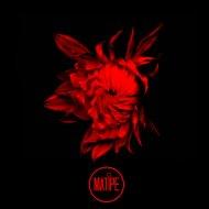 DYI Mob - Bad Company (Original Mix)