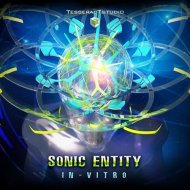 Sonic Entity - In-Vitro  (Original Mix)