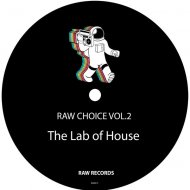 The Lab Of House - Right Direction (Original Mix)