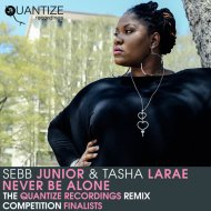 Sebb Junior & Tasha LaRae - Never Be Alone (Eric Ericksson & Johan Olsson Remix)