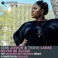 Sebb Junior & Tasha LaRae - Never Be Alone (Koolstyle Remix)