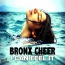 Bronx Cheer - I Can Feel It  (Paul Parsons Disco Dub)
