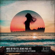 Jolyon Petch & Mind Electric feat. Amy Pearson - What Do You Feel (Ben Renna Remix)