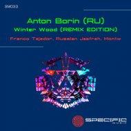 Anton Borin (RU) - Winter Wood  (Russlan Jaafreh Remix)